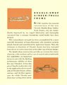 1932 Chrysler Floating Power Brochure-09.jpg